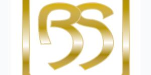 BATLLESEOANE ICONO WEB
